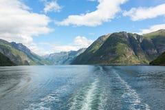 挪威海湾和山 库存图片