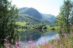挪威的海湾 库存照片