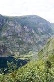 挪威的湖 库存图片