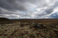 挪威秋天横向 免版税库存图片