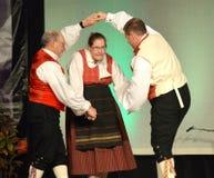 挪威舞蹈家 库存照片