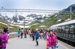 挪威, FLAM铁路 免版税库存图片