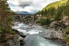 挪威 与一座石被成拱形的桥梁的风景在山河 杉木森林和石地面 库存图片