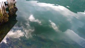 挪威-理想的海湾反射在清楚的水中 影视素材