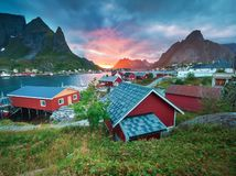 挪威Rorbuer在雷讷Hamnoy挪威 库存图片