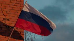 振翼在慢动作的风的俄国旗子 股票视频