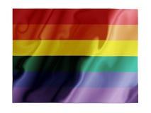 振翼的同性恋者 免版税库存图片