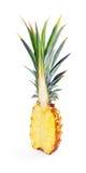 挺直半成熟菠萝 库存图片