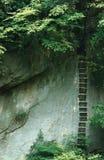 挺直台阶在黄山公园 图库摄影