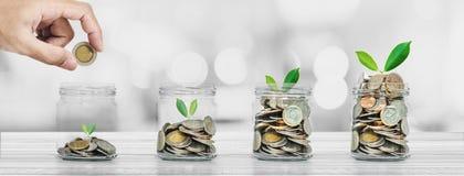 挽救金钱和投资概念,投入硬币的手在有植物发光的玻璃瓶 免版税库存照片