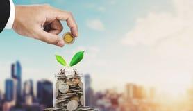 挽救金钱概念,把硬币放的商人手在玻璃瓶子容器,当植物芽发光,在日出ba的曼谷市上 免版税库存照片