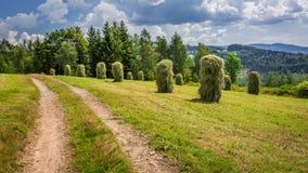 捆在乡下公路附近的干草 免版税库存图片