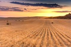 捆绑在一个干燥领域的秸杆在卡斯蒂利亚的夏天期间在西班牙 免版税库存照片