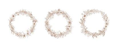 捆绑葡萄酒花圈或装饰圆的花卉框架由开花制成开花手拉与等高线  库存例证