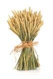 捆绑麦子 免版税库存照片