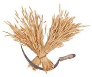 捆麦子和镰刀 库存照片