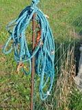 捆绑绳子 库存图片