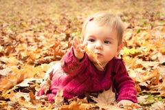 捉住一片黄色叶子的婴孩 库存图片