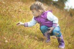 捉住在草的女孩一只蚂蚱在公园 免版税库存图片