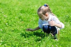 捉住在草的女孩一只蚂蚱 免版税库存照片