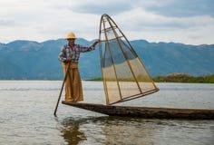 捉住钓鱼鱼的渔夫生长池塘停留三的芦苇标尺 库存照片