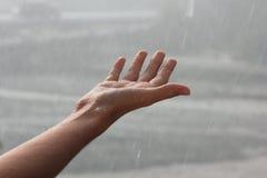 捉住雨珠。 免版税库存图片