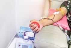 捐赠的献血者与在手中举行在注入期间的红色有弹性的球 免版税库存照片