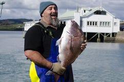 捕鱼业 库存图片
