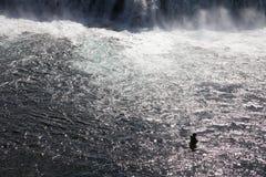 捕鱼冰岛 库存图片