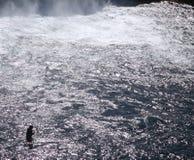 捕鱼冰岛 库存照片