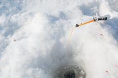 捕鱼冰谎言捕捉冬天zander 为冬天渔的一个工具在手上 一根钓鱼竿在结冰的手上 库存图片
