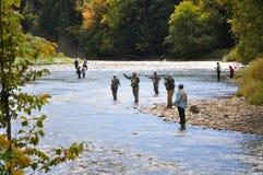 捕鱼季节 库存图片
