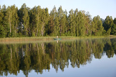 捕鱼早晨 库存图片