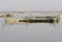 捕鱼网在沼泽地 免版税库存照片