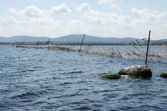 捕鱼网- 14 图库摄影
