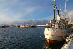 捕鱼船在Vardo,挪威港口  库存图片