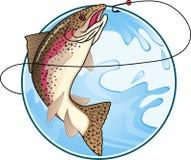 捕鱼鳟鱼 免版税库存照片