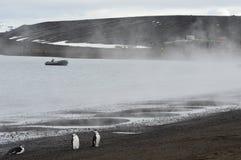 捕鲸船` s海湾,南极洲 免版税库存图片