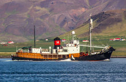 捕鲸船Hvalur 9个RE-399。 免版税库存图片