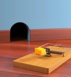 捕鼠器 免版税库存图片