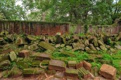 损伤墙壁石头在密集的密林 angkor柬埔寨 免版税库存图片