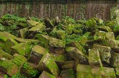损伤墙壁石头在密集的密林 angkor柬埔寨 免版税库存照片
