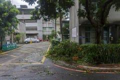 损坏做由台风Soulik对台北市 库存照片