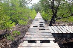 损坏的木桥的连接点 图库摄影