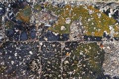 损坏的铺磁砖的地板 免版税库存照片