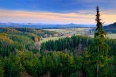 捷克典型的森林风景 小山和村庄在夏天早晨 早晨漂泊瑞士公园秋天谷  小山与 免版税图库摄影