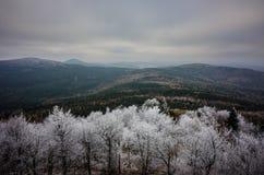 捷克冬天风景 库存图片