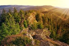 捷克国家公园共和国sumava 库存照片
