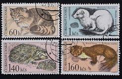 捷克斯洛伐克的一系列的老邮票 欧洲哺乳动物的动物  免版税库存照片