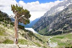捷克横向国家天然公园美丽如画的瑞士 免版税库存图片